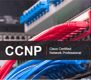 CCNP Training course in Melbourne ccnp training course in melbourne CCNP Training course in Melbourne ccnp traing